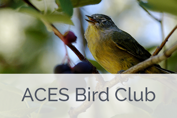 ACES Bird Club A.B.C. Membership