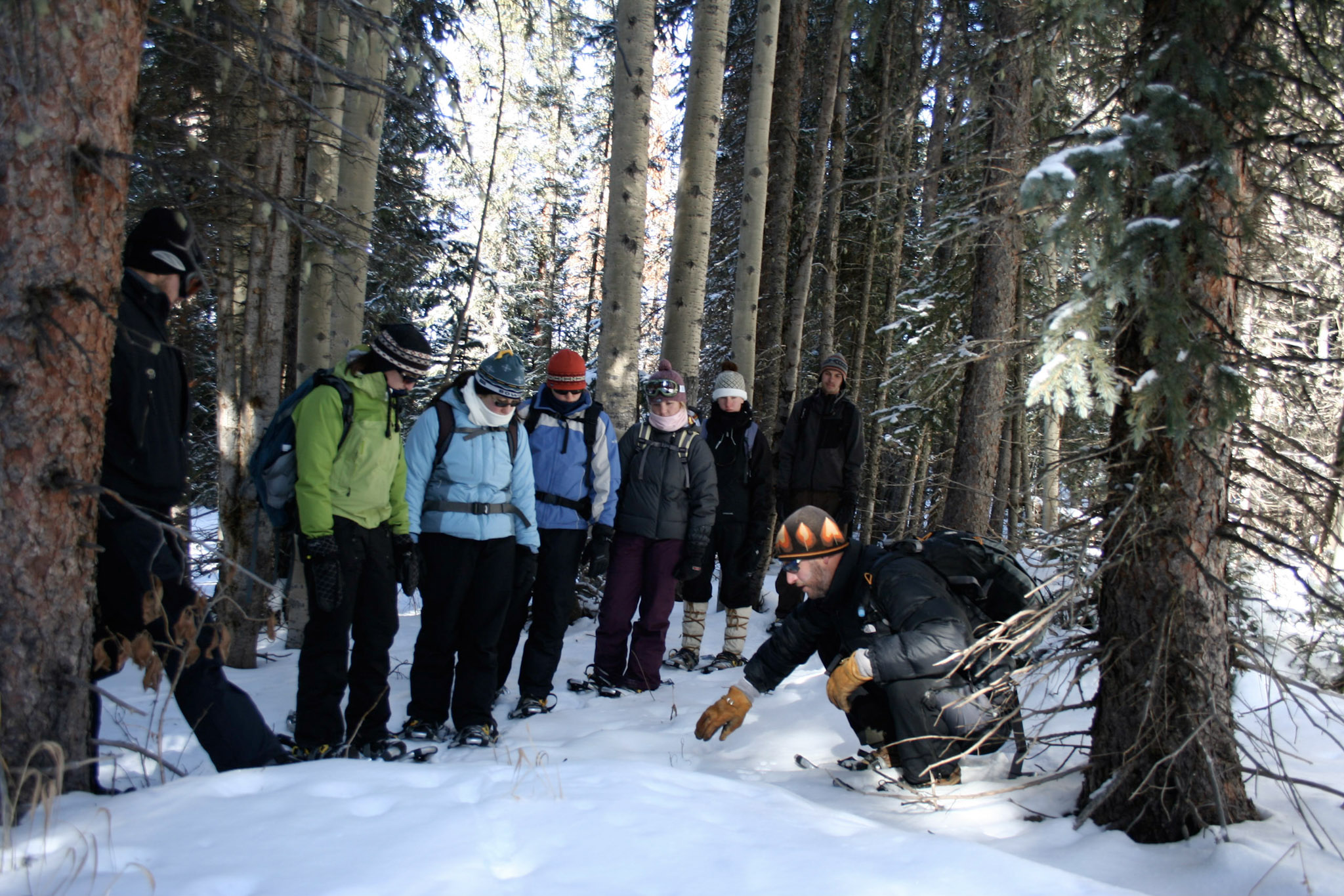 ACES Snowmass Mountain Snowshoe Tour